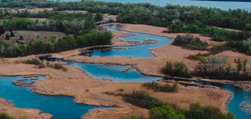 Обуховские плавни, Днепр. Как выглядят Днепровско-Орельский природный заповедник с высоты